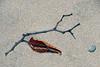 04-DSC_0047 Zen Leaf Twig ss PS-001