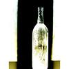 Dirty Wine - sig