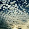 Risa's Sky
