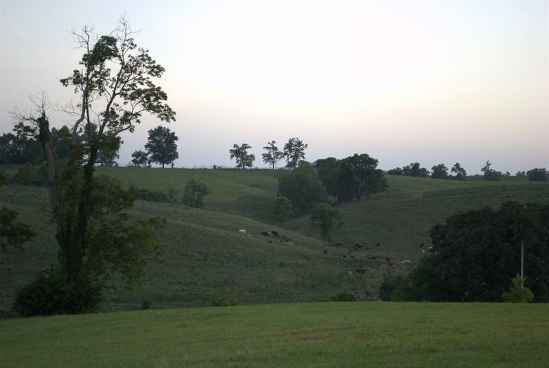 The farm, 07/23/2010