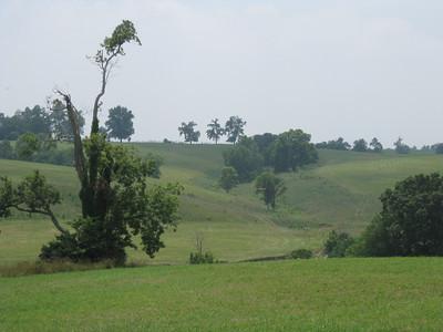 The farm, 07/09/2011