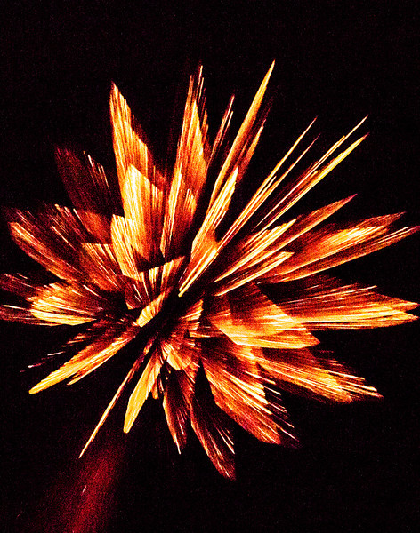 Exploding Feathers