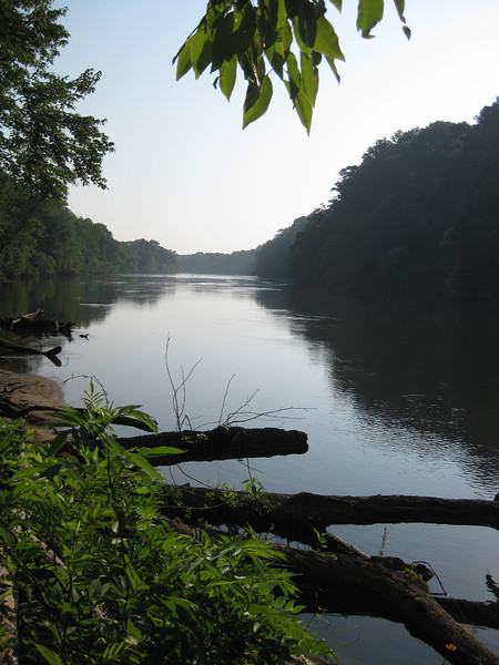 Photo hike along the Chattahoochee Recreation Area, June 6, 2011