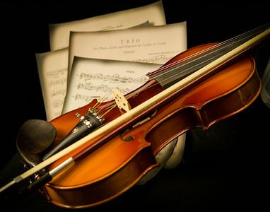 Violin3