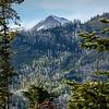 Hahns Peak 1