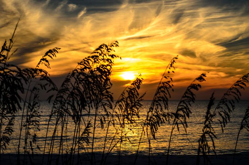 Gulf Sunset 839
