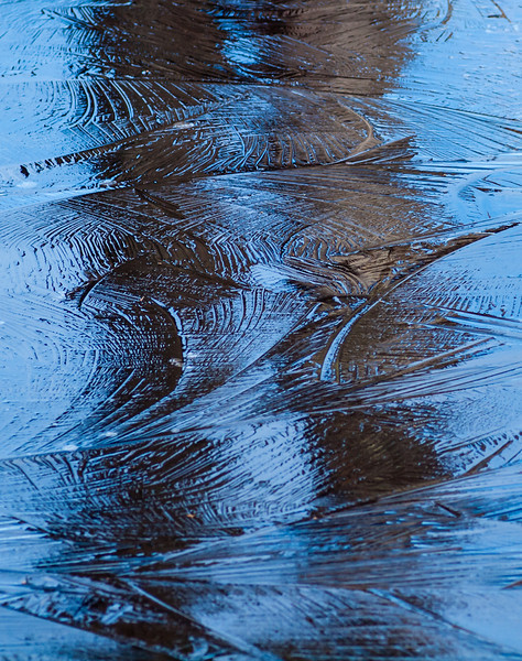 New ice on a pond in the Musquash. The reflection of two snags made for a nice contrast to the reflection of the blue November sky. OM 90mm at f4