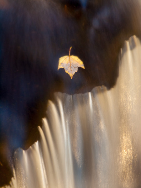 A trapped leaf, a cascade and the morning sun all conspired to make this shot magical. Once again tripod in water, photographer on rock.