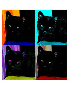 kitty pop art