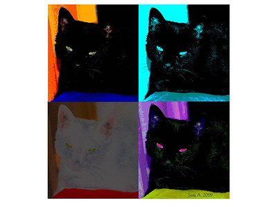 kitty pop art 2