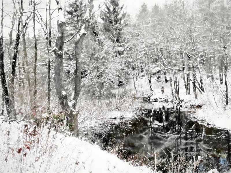 A winter reflection scene.
