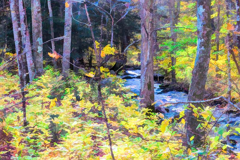 Small stream through autumn woods