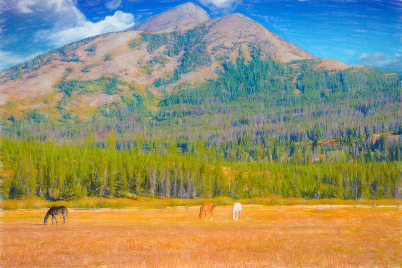 A wide view of three horses in pasture in front of Elk Mountain,Essex Montana