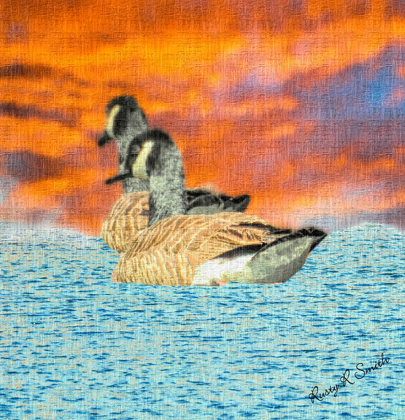Abstract art two canada geese