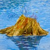 Old stump rotting in shallow water