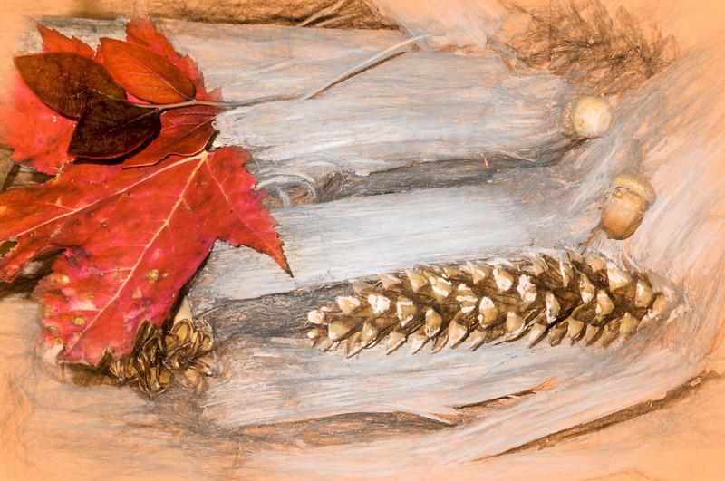 Fall nature still life