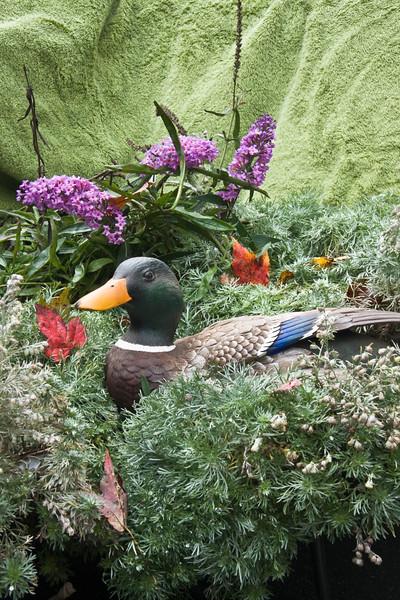 A vertical stock photograph of a mallard duck sculpture in a colorful still life setting.