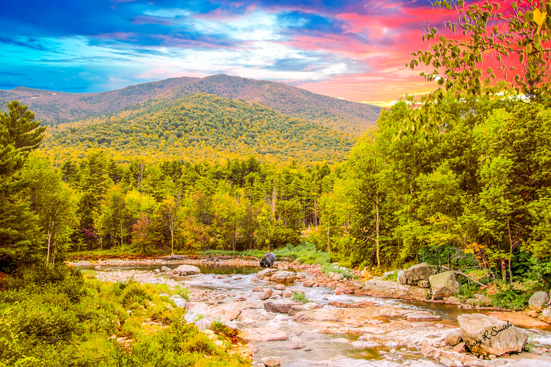 Art Landscape with a river,black  bear and mountains,