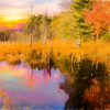 Beaver pond in autumn.