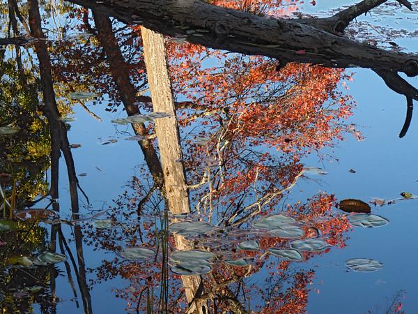 A horizontal stock photo of fall reflections.