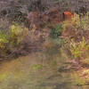 Fresh water stream meandering through late fall foliage