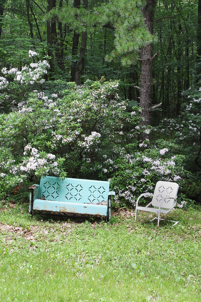 A vertical stock photo of a metal chair and glider setting next to a clump of mountain laurel.