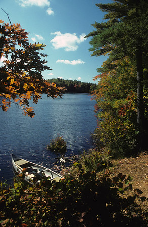 A vertical stock photo of Canoe on shore of wilderness pond, a beautiful fall day in new england.