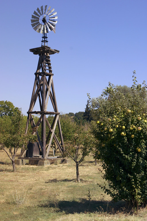 A vertical stock photo of the Windmill at John Muir Homestead Martinez California.