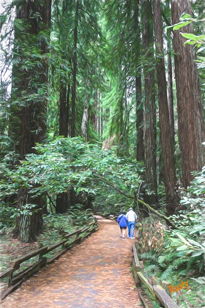 Father and daughter walking through giant redwoods.