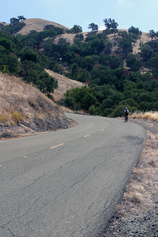 A vertical stock photograph of a man Riding a bicycle up Mt. Diablo near Walnut Creek California.