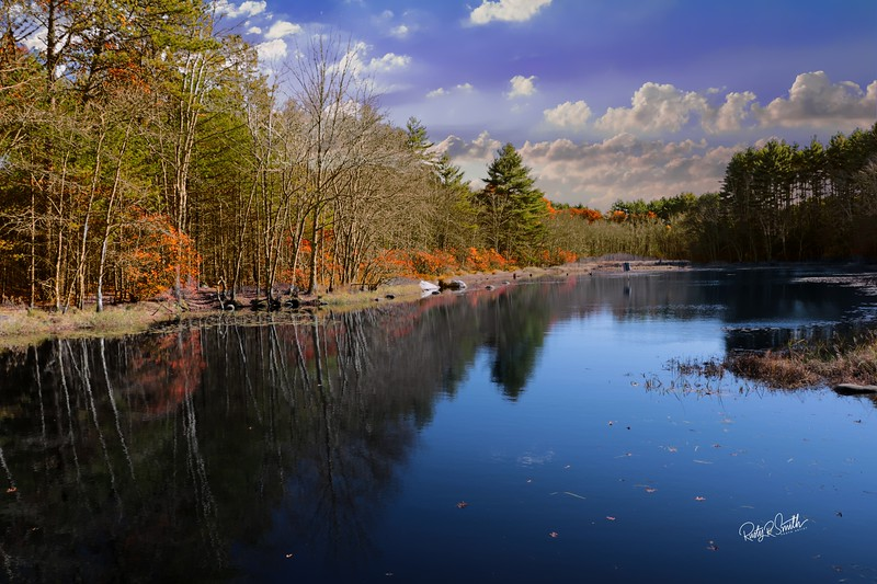 Dawley Pond Pachaug State Forest,Eastern Connecticut.