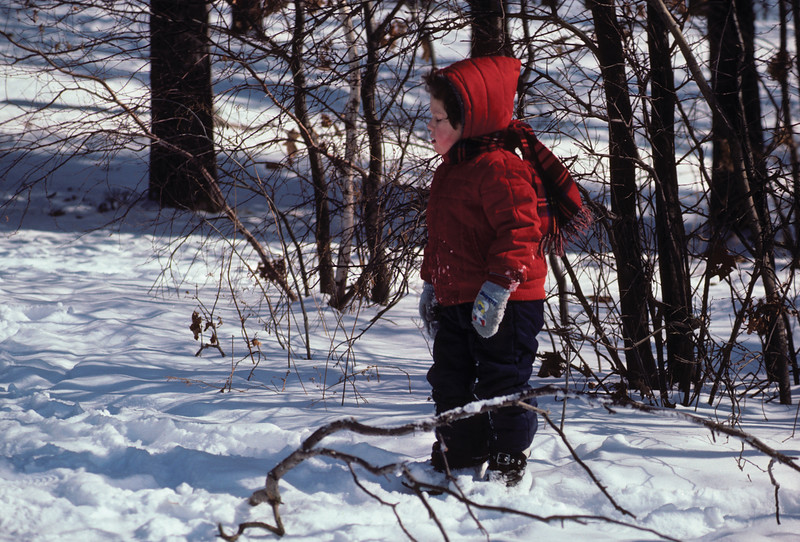 a horizontal stock photograph of A young girl in a bright red jacket standing alone in the snow.