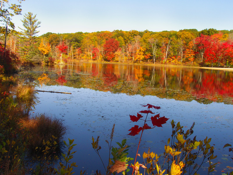 A horizontal stock photo of fall reflections on the pond at Gay City State Park, Hebron Connecticut.