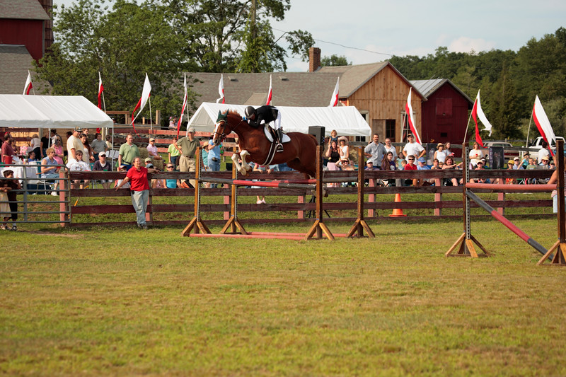 A horizontal Stock Photograph of a girl jumping her horse over a double four foot jump.