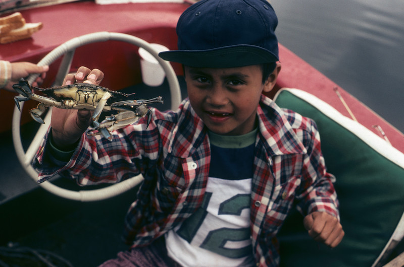 A young filipino american boy is holding a live blue crab in his hand.