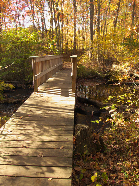 A vertical stock photo of a walking bridge over the Little River in Gay City State Park. Hebron Connecticut on a beautiful fall day.