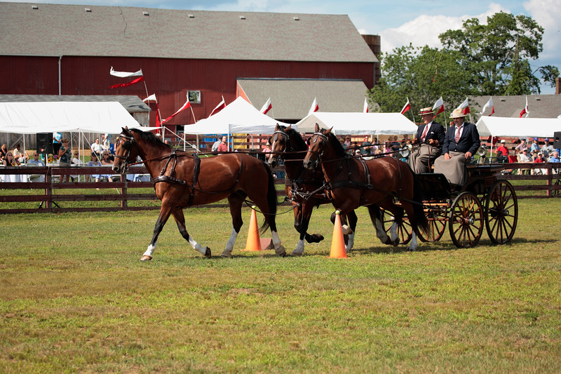 A horizontal Stock Photograph of a horse drawn buggy going through a cone course.The two men are wearing formal attire of the period. The three horse team is hitched in a unicorn setup.