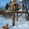 A Vertical Stock Photograph of three children playing in a tree house on a beautiful winter day. Their dog prances around below them.