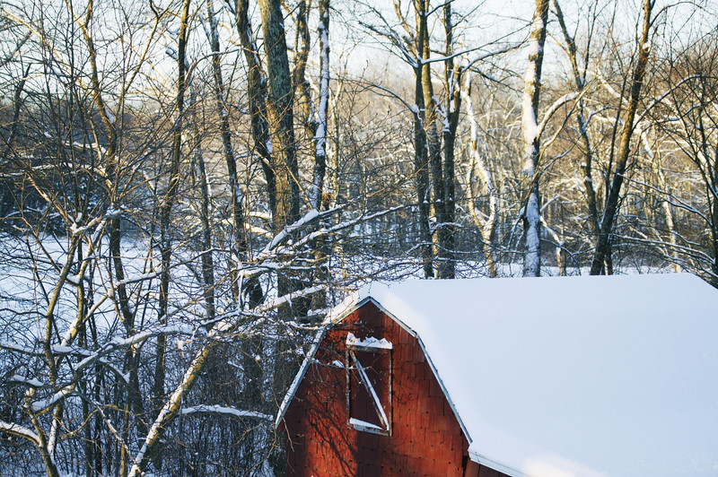 A horizontal stock photograph of the roof line of a small red barn. Snow covered trees in the background are lighted by the setting sun.