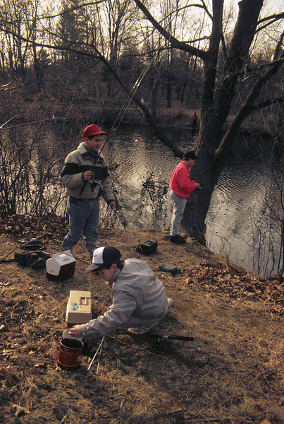 A vertical stock photograph of Three preteenage boys get their fishing gear ready to fish for trout on opening day.