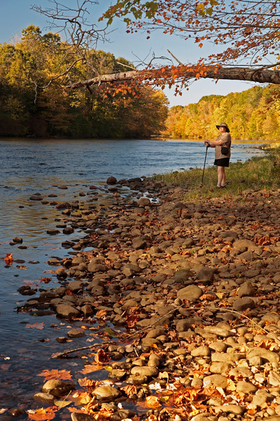 A Vertical Stock Photograph of a woman standing on the bank of the Shetucket River in Scotland Ct. on a beautiful autumn afternoon.
