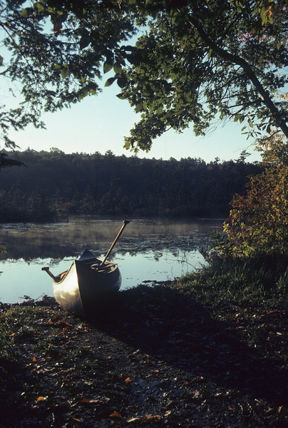 A vertical stock photograph of a canoe setting on the shoreline of a small pond.Early morning fall day with mist rising from the water.