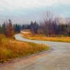 Winding dirt road through New Hampshire autumn landscape .