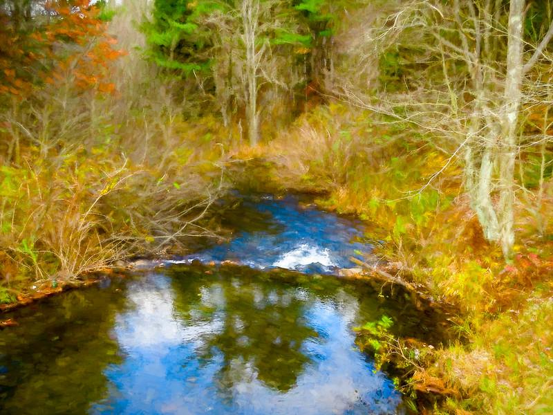 A small stream running through autumn forest.