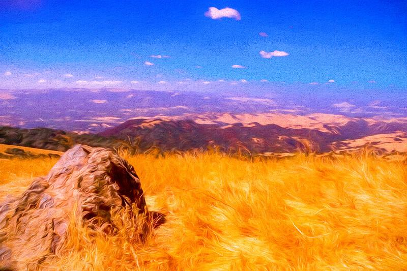 A view from Mt. Diablo State Park. Near Wallnut Creek Ca.