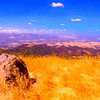 A view from Mt. Diablo State Park. Near Wallnut Creek Ca.