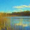 A Marsh in late fall
