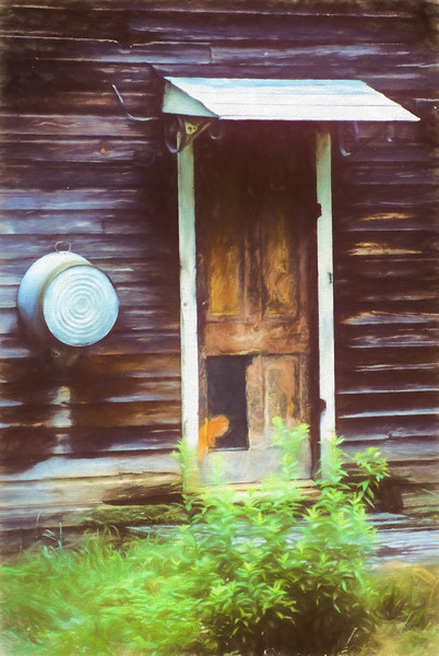 A stilllife portrait of the door on the old homestead