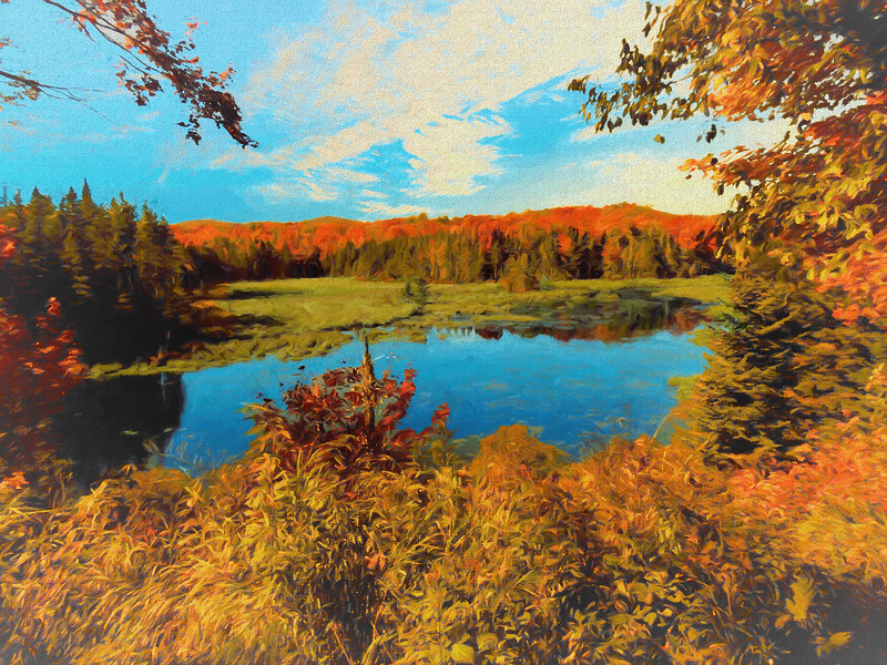 A small marsh surrounded by bright Autumn color.