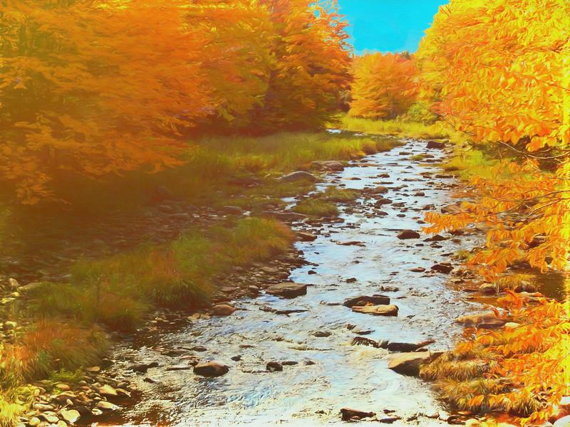 A small stream bright fall color.